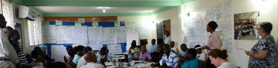 Program evaluation and strategic review, Haiti